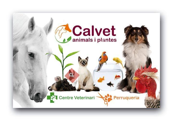Calvet animals i plantes
