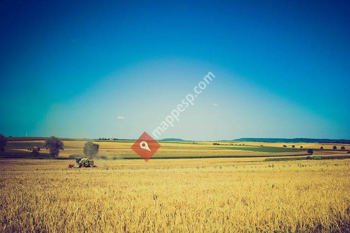 Empresa Agraria
