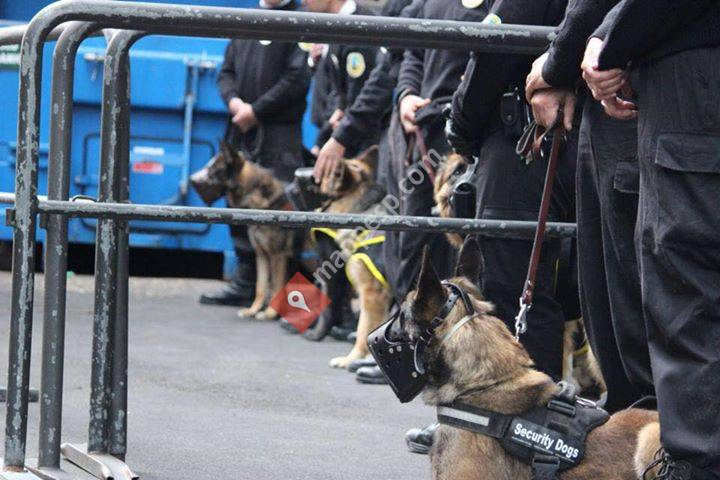 Security Dogs K9 Training Center